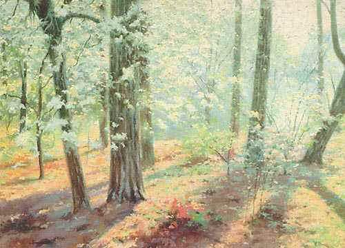 Sunlit Woods-UnfLg