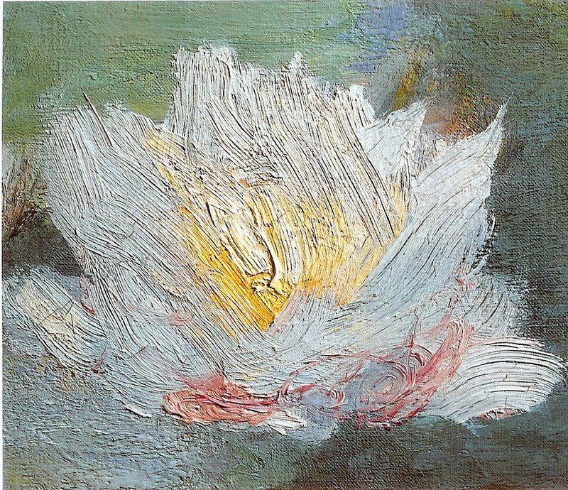 Linnea splotchy water lily no cap