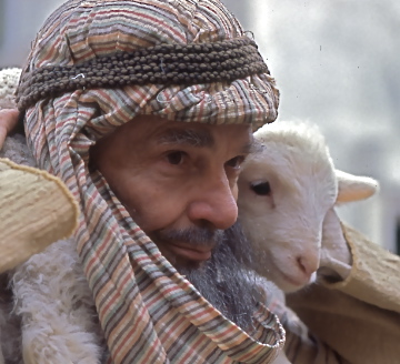 Shepherd & lamb(1)