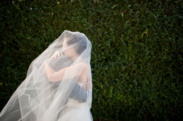Bride and veil embrace
