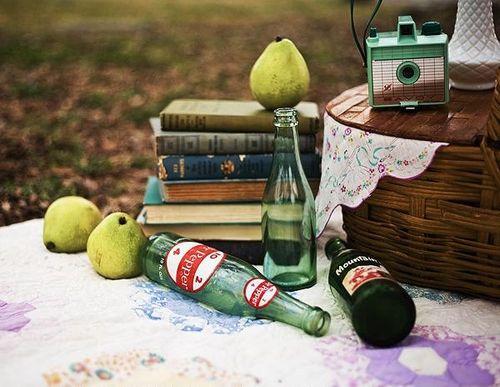 Vintage-picnic-inspiration-classic-bride-blog