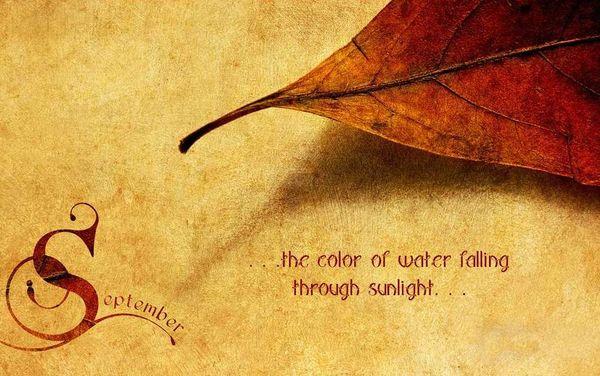 September Water Through Sunlight