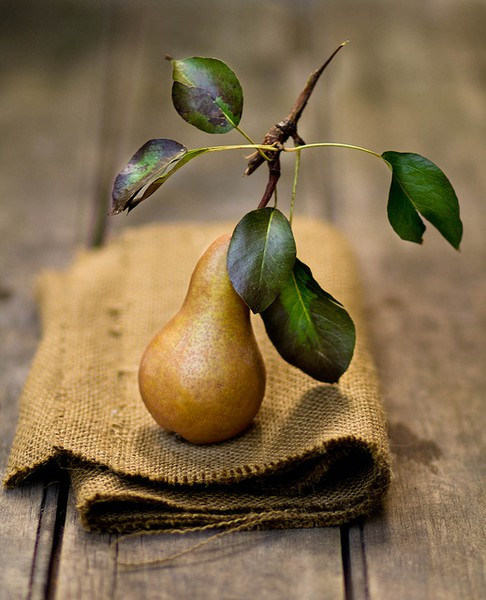 Pear with burlap