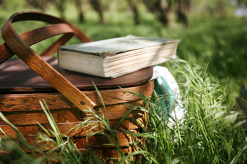 Picnic with books