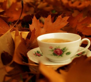 Tea and autumn leaves